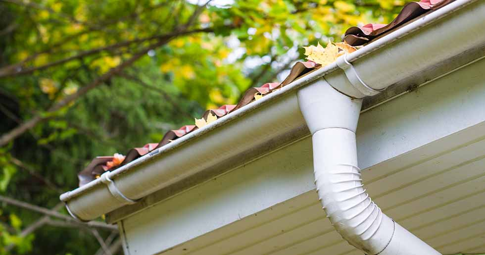 roof gutter clogged with leaves