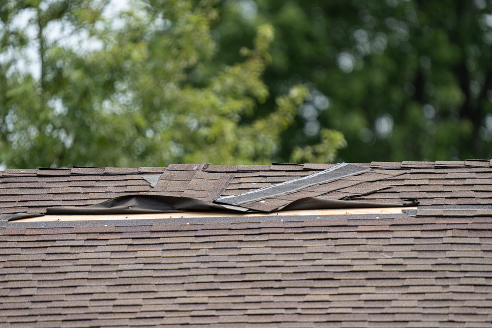 contact roofer to fix underlying roof issues