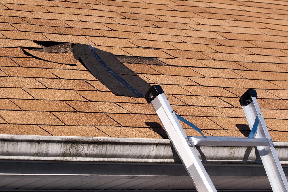 fix damaged roof shingle