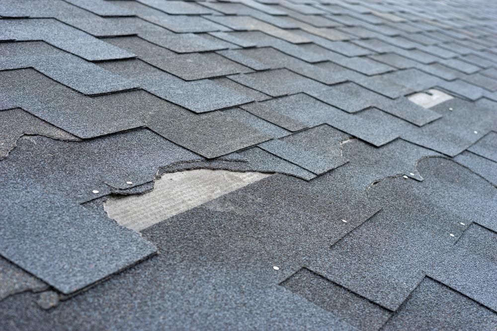 shingle roof damage